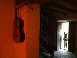 Django Music in Val Binon 2016